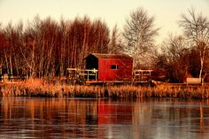 Sackville Waterfowl Park   Recent Photos The Commons Getty Collection Galleries World Map App ...