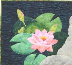 Water Garden: Water Lily (#5)
