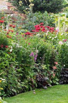 Small garden herbaceous border tips, using perennials and annuals #garden #gardening #middlesizedgarden #backyard