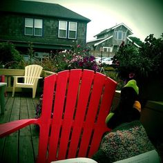 22 aug 13  [on the deck of the Jules Verne Room, Sylvia Beach Hotel, Newport, Oregon]