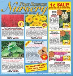 73 best mh free gardening seed catalogs images on pinterest four seasons nurserys free seed catalog mightylinksfo