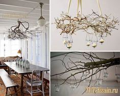Сухие ветки в декоре интерьера + Фото
