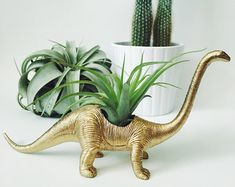 customize your own small dinosaur planter with air plant; home