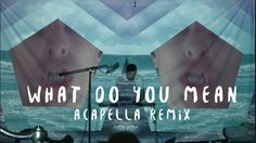 Justin Bieber - What Do You Mean? - Dillon Francis - Acapella Remix