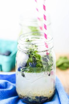 Blueberry Mint Spritzers