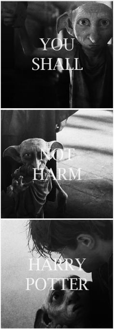 """You shall not harm Harry Potter!"" #harrypotter #dobby ♡ ♡ My dog's name is Dobby in honor of Dobby. My dog also looks like Dobby a bit he has a long nose and long ears"