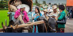 Irmãs usando a brochura Boas Notícias em Madagascar