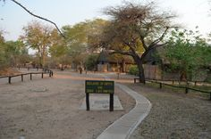 """Beware"" #WildernessSafaris #Caution #Beware #Sightings #Animals #MVUU #WildernessLodge #Africa"