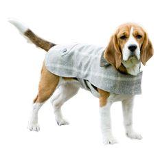 Slate Tweed Dog Coat