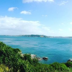 Missing reading with a view!! #missingfalmouthuni #falmouth #christmas #cliffs #sea #view #studytime