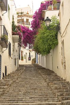 Picturesque alleys of Altea, Comunidad Valenciana / Spain (by mitko_denev).