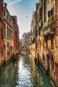 Amazing Places - Venice - Italy (by Vicky Tsavdaridou)