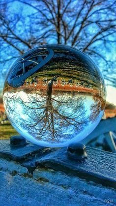 Amazing Reflection