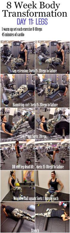 8 Week Body Transformation: Day 11 LEGS