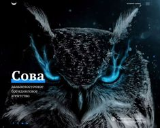 Owl – branding agency from Vladivostok, Russia. We make logos and corporate identity, write guidelines and help with naming. We design packaging, books, outdoor advertising and POS materials. Examples Of Concepts, Web Design Examples, Creative Web Design, Web Ui Design, Web Design Trends, Web Design Inspiration, Creative Studio, Branding Agency, Showcase Design