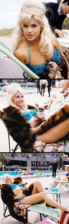 Jayne Mansfield 1964. swimsuit + fur!!
