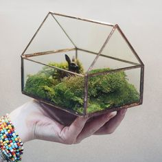 Little Geometric House Glass Terrarium  Modern by GOODWOODWORKSHOP #succulents #terrarium #indoorplants