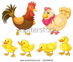 free images to sew hens or roosters   Rooster, Hen And Chicks On White Stock Vector 101106616 : Shutterstock