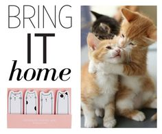 """""""Bring It Home: Kitten Adhesive Note Set"""" by polyvore-editorial ❤ liked on Polyvore featuring interior, interiors, interior design, home, home decor, interior decorating and bringithome"""