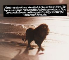 Narnia was there for me when life didn't feel like living; When I felt hopeless and alone, Narnia and the Pevensies gave me hope. Now, my scars don't matter, and I always feel nostalgic and thankful when I watch the movies. Narnia Book Series, Chronicles Of Narnia Books, Aslan Quotes, Book Quotes, Aslan Narnia, Christian Warrior, Prince Caspian, Gives Me Hope, Cs Lewis