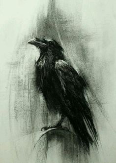 Use of charcoal effectively captures the appearance of a crow/raven. Apart from the dark colour, the indefinite strokes captures accurately the contour of the bird's feathers. Crow Art, Raven Art, Bird Art, Crow Painting, Bird Paintings, Bild Tattoos, Charcoal Art, Crows Ravens, Art Drawings