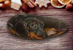 Роспись по камню. Такса. Rock painting dachshund.