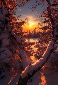 Here comes the sun! is part of Winter scenery - Winter Pictures, Nature Pictures, Beautiful Pictures, Beautiful Beautiful, Winter Sunset, Winter Scenery, Winter Snow, Winter Photography, Landscape Photography