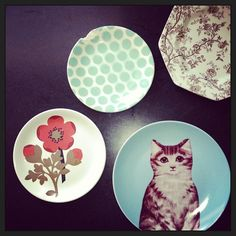 We need the kitty plates.