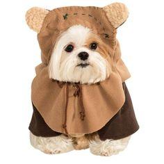Star Wars - Ewok Pet Costume #shopko