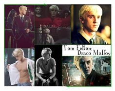 """Tom Felton as Draco Malfoy? I think YES!!"" by brookeleann ❤ liked on Polyvore featuring art"