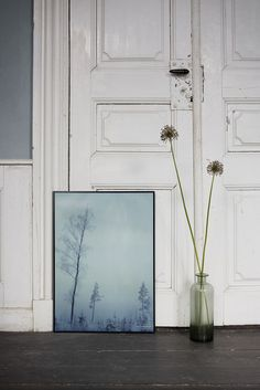 ViSSEVASSE has the privilege of presenting the work of the Swedish photographer Dan Isaac Wallin. See all the posters here! Oversized Mirror, Illustration, Dan, Furniture, Home Decor, Posters, Decoration Home, Room Decor, Home Furnishings