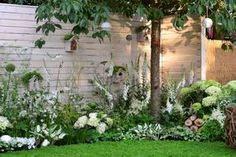 Dans ce jardin aménagé en Angleterre, les fleurs blanches donnent le ton et tout est fait pour accueillir les oiseaux.