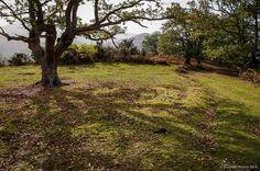 Sombra insuficiente | SantiMB.Photos