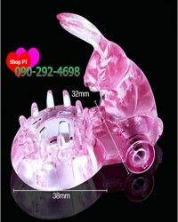 Chú thỏ diệu kỳ rung cực phê