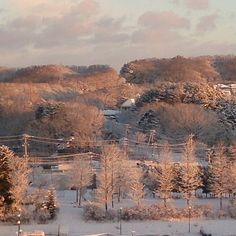 【canacana7803】さんのInstagramをピンしています。 《朝焼けの森 ひと晩降り続いた雪で今朝も銀世界。 歩く度にキュッキュッと音が鳴るパウダースノーが心地良い朝(^-^) . #空 #ソラ #そら #朝焼け #雪 #パウダースノー  #銀世界 #真っ白 #森 #雑木林 #公園 #自然公園 #青空 #淡い水色 #朝焼け #オレンジに染まる森 #雲 #くも #7時の空  #空が好き #雲が好き #朝焼けが好き #自然が好き #冬が好き #雪が好き #今日も穏やかな一日に》