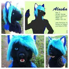 Alaska wolf 2015 by Primal-Art Fursuit Head, Furry Art, Beautiful Creatures, Art Pictures, Alaska, Wolf, Art Pieces, Cosplay, Cool Stuff