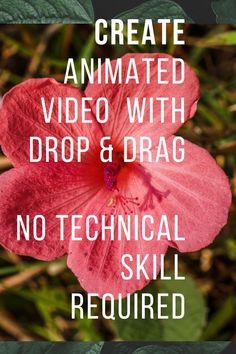 No Technical Skill Required- Create Animated Video With Drop & Drag Function For Your Business! Use Toonly Software Today! #toonlysoftware #animatedvideo #software Whiteboard Animation, Text Animation, Create Animation, Create Animated Gif, How To Make Animations, Cartoon Gifs, Animated Cartoons, Animated Video Maker, Lip Sync