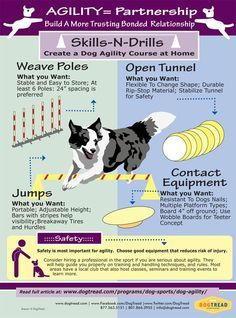 AGILITY= Partnership - Build A More Trusting Bonded  Relationship with Your Dog…