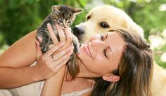 How to keep your pet cool and safe in the summer heat