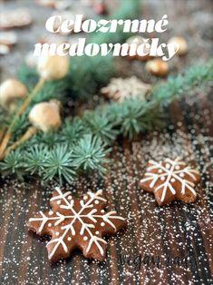 Vianočné medovníčky z celozrnnej múky a včelieho medu - Vegan Lady Gingerbread Cookies, Vegan, Baking, Lady, Desserts, Food, Gingerbread Cupcakes, Tailgate Desserts, Deserts