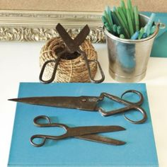 Set of 3 One of A Kind Found Scissors | Ballard Designs