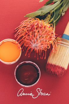 Stunning coral paint colour mix using Barcelona Orange and Burgundy colours from Annie Sloan