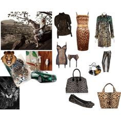 A fashion look from January 2014 featuring leopard print dresses, turtleneck t shirt and curved hem tee. Browse and shop related looks. Turtleneck T Shirt, Tees, Shirts, Turtle Neck, Fashion Looks, Polyvore, Animals, Shopping, Dresses