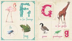 learn you alphabet with fun animals!  #funlearning#QED