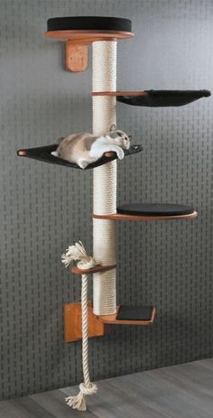 Height 186 cm Weigh Height 186 cm Weight 19 kg Wall Mounted Cat Tree Model Wendelin consists of modules: Wall bracket (H 22 cm B 13 cm T 37 cm) Step (W 30 cm D 33 cm H cm) Rope holder with sisal rope (W 13 cm D. Mimi Chat, Diy Cat Tree, Cat Trees Diy Easy, Cool Cat Trees, Cat Towers, Cat Playground, Playground Design, Cat Shelves, Cat Condo