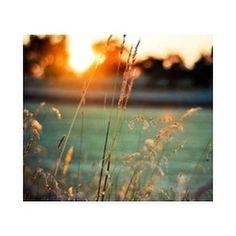 On a monday night...  #sezane #inspiration #sunset #sourceunknown #breathe #sezaneontheroad