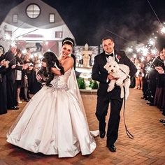 Beautiful @pninatornai bride going down the aisle with hubby and her adorable puppies! Bride: @sibbzster | Photo : @the_markows #pninatornai #weddingstory #happy #tot #tonguesoftuesday #traveltuesday #amazing #dogsofinstagram #weddingpets #beautiful #brid