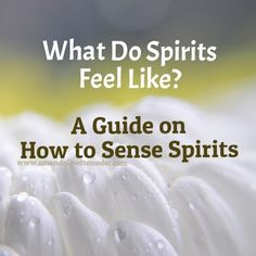 Ever wondered what Spirits feel like? Learn how to feel Spirits and the different sensations they produce within you >>> Read this article >>>