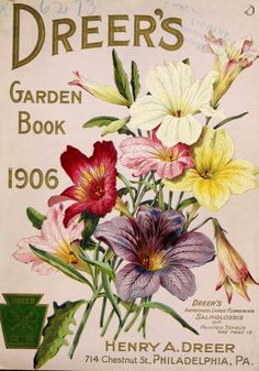 Front cover of 'Dreer's Garden Book' 1906 with an illustration of Dreer's improved large flowering Salpiglossis or Painted Tongue. Henry A. Dreer. 714 Chestnut Street. Philadelphia, Pa. U.S. Department of Agriculture, National Agricultural Library archive.org