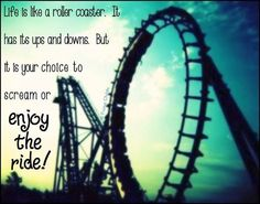 32 Best Life Is A Rollercoaster Images Roller Coaster Roller